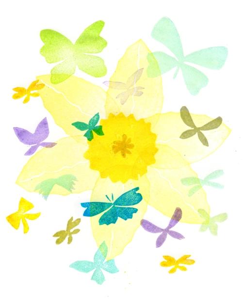 narcis met vlinders klaar