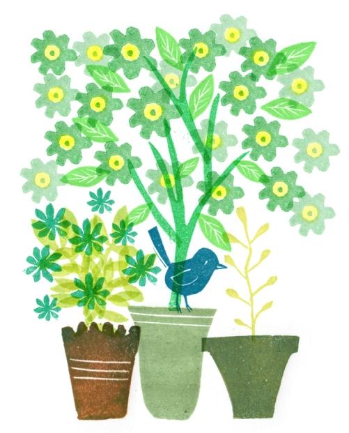 planten en bloemen klaar