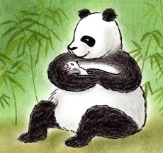 panda nonfictie3