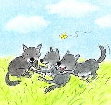 wolf nonfictie 3