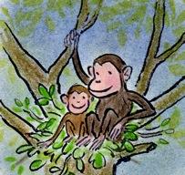 chimpansee 2