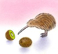 kiwi nonfictie 2